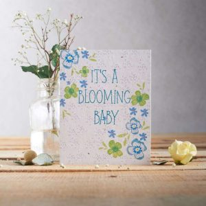 Hannah Marchant it' a boy occasion card