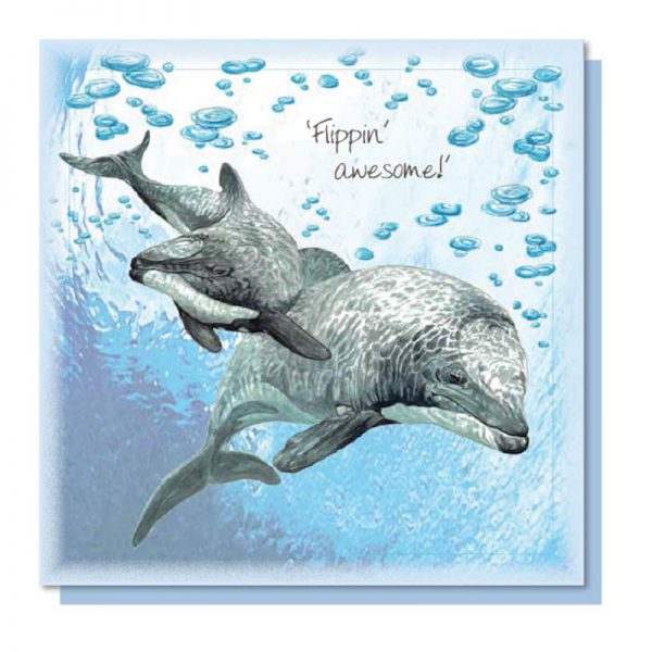 Sweet Design everyday greeting card with a beautifully illustrated image of an endangered Maui Dolphin