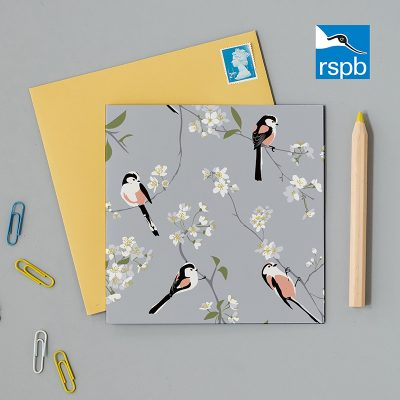 blank greeting card with a pretty pale blue background with four birds sitting on delicate branches with little flowers