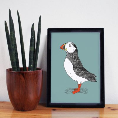 a framed print of a puffin on a blue background