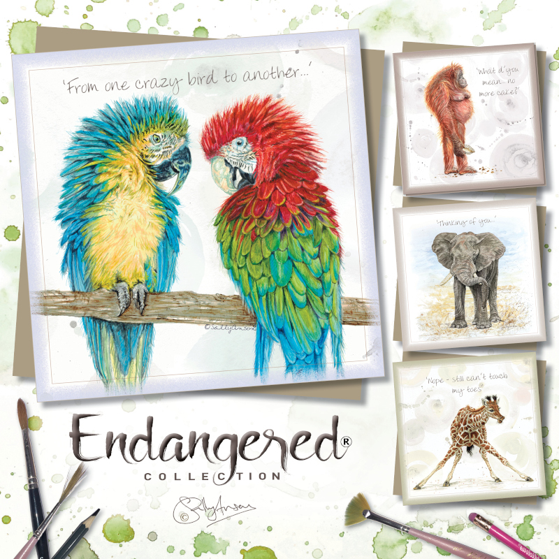 various everyday greeting card designs illustrated by sweet design part of the endangered animal range