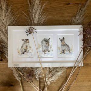 framed print of 3 hares, part of the endangered animal range from Sweet Design